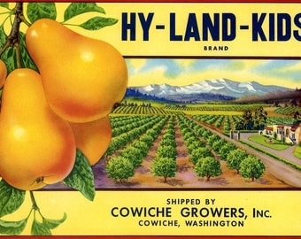 Hy-Land-Kids Cowiche Pear Crate label