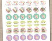 Bill and Pay Day Printable Planner Stickers - Instant Download PDF for Calenders Planners Home Management