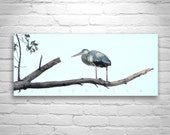 Blue Heron, Bird Photography Wall Art Print, Nature Photography, Great Blue Herons