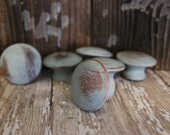 Set of 6 light Robin's Egg Blue Cottage Chic wooden drawer knobs shabby distressed rustic beach house shabby and chic