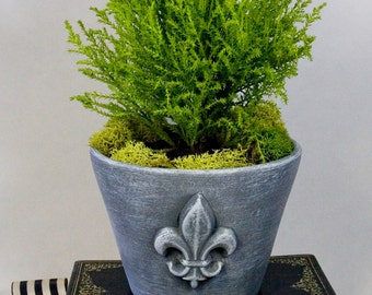 Planter with Fleur-De-Lis Design