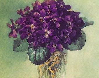 Outstanding Victorian Violets, Art Print, Paul de Longpre, Wall Art