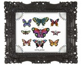 11x14 Butterfly Print by Cora Rountree
