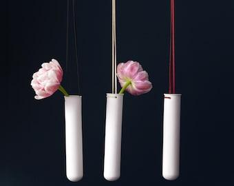 Hanging Test Tube Vase