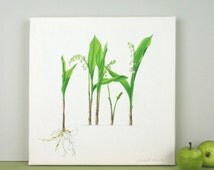 Lily of the Valley Canvas Print - wall art- gift for gardener - art for bedroom - flower illustration - gift for nature lover - watercolour