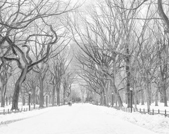 New York City Photography, Snow in Central Park, Poets Walk, Living Room Art,Winter in NYC, Central Park Stroll, Black and white Photography