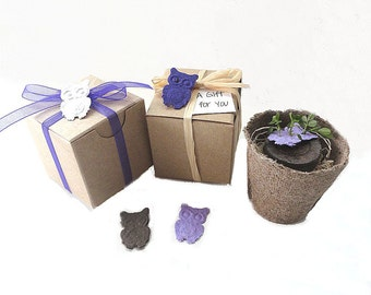 12 Owl Party Favors, Birthday, Wedding Favors, Bridal Showers - Plantable Seed Paper by Nature Favors