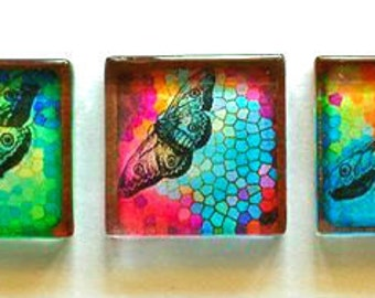 Glass Magnets - Butterflies - Set of 5 - 1 Inch Glass Squares - Gift for Woman, Mom, Sister Gift