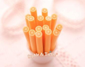 Polymer Clay Fruit Orange Canes Set of 12pcs
