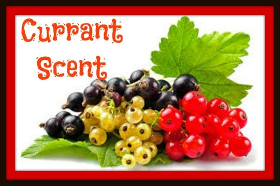 Currant Scented Soy Wax Melts