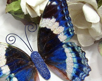 Butterfly Embellishments In The Navy