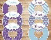 6 custom baby closet dividers (No.213) purple blue girl flower butterfly stripe clothes nursery organizer Closet Doodles®