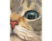 cat drawing art print - cat eye ginger tabby cat lover's gift unique card art for wall home kid's room dorm , desk decoration