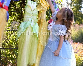 Cinderella costume FULL LENGTH, princess custom costume 4t Cinderella tutu