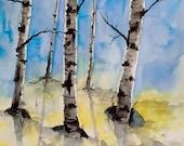 "Original Watercolor Painting- ""Birch Tree Art"" Maine Landscape"