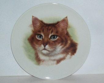E. & R. Golden Crown Blue Eyed Tabby Cat Porcelain Collectors Plate, Bavaria Schumann Arzberg Germany, Home Decor, Wall Hanging, Art