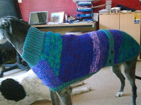 Knitting Patterns For Greyhound Sweaters : Greyhound Coat Knitting Pattern Free UK Postage
