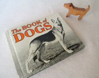 1930s The Book of Dogs by James Gilchrist Lawson, 100 Breeds, 1934, Vintage