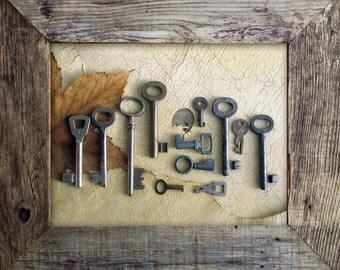 vintage keys - 12 old keys - iron and brass skeleton keys (S-14b).