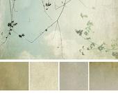 Ephemera Texture Collection: Thunderstorm Series