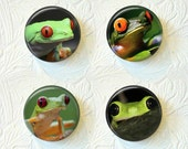Magnets Set of 4 Frogs Buy 3 Get 1 Free  443M