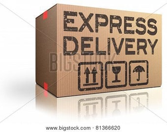 Express Delivery Shipping and rush fee