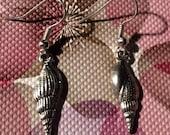 cute shell  earrings