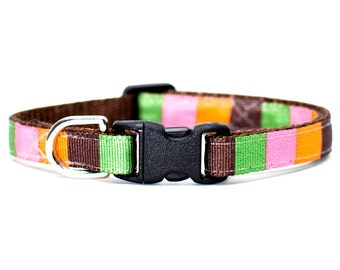 """Cat Collar - """"The Librarian"""" - Multi-Colored Boxes"""
