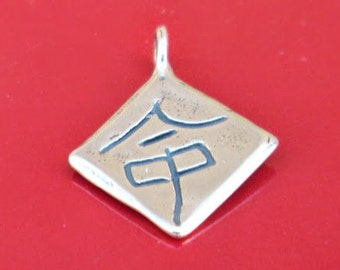 DESTINY Charm - Chinese Symbol Sterling Silver Inspirational Pendant