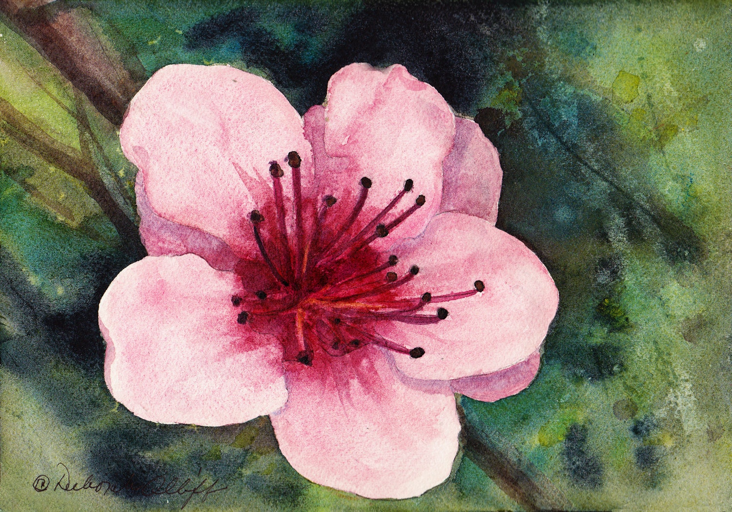 Delaware Peach Blossom Watercolor Original State Flower