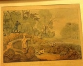 Antique Engraving Print PHEASANT SHOOTING Drawn by ALKEN Engraved by Pollard Hunters Dogs Phasant