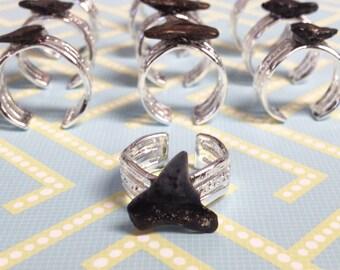 Shark Tooth Toe Ring