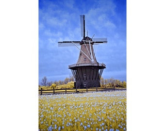 DeZwaan Dutch Windmill Infrared Photograph on Windmill Island in Holland Michigan No.0001 - A Fine Art Infrared Landscape Photograph