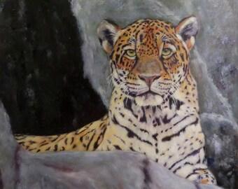 "Jaguar wildlife animal cat original art oil painting modern realism on 12"" x 12"" canvas by Sandra Cutrer Fine Art"