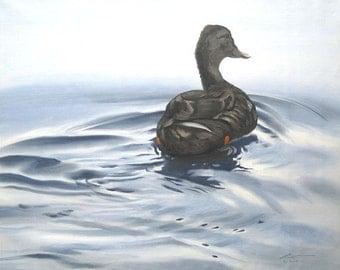 Mallard Duck wildlife painting 20x24 oils on canvas by RUSTY RUST / D-94
