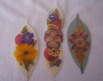 Pressed flowers on leaf skeletons book marks, set of 3. Set 026.