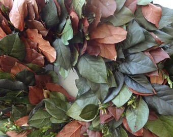 Salal Wreath   Lemon Leaf   Preserved Wreath  Elegant Wreath  Fragrant Wreath  Front Door Wreath  Mothers Day  Autumn Wreath