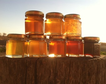 Honey Sampler - 8 varieties of pure raw honey