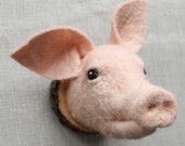 supercute needlefelted miniature pig head style faux taxidermy