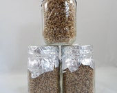 3 Rye Grain Mushroom Substrate Jar Pre-Sterilized Ready To Be Inoculated Organic