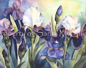 "Notecard ""Field of Iris"" by Sandi McGuire"