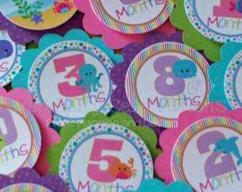 Monthly Milestone Tags: Ocean Friends for Girl - photo banners photo prop, 1st birthday memory banner memory book babyshower -Under the Sea