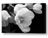 """Large Canvas Wall Art, 24"""" x 14"""", Ready to Hang, Black and White Tulips, Fine Art Floral Photography by Glennis Siverson"""