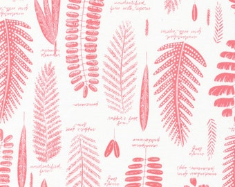 Biology Pressed Leaves, Sarah Watson, 100% GOTS-Certified Organic Cotton, Cloud9 Fabrics, 125505