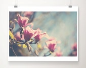 pink magnolia photograph magnolia tree photograph spring photograph pink flower photograph nature photograph pink magnolia print
