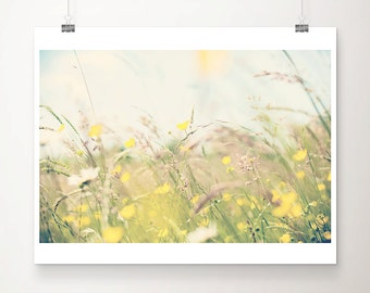 buttercup photograph yellow flower photograph buttercup print nature photography botanical print wild flowers print summer photograph