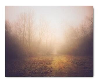 Foggy Landscape Print, landscape photo, fog, fog print, home decor, fine art photography, golden landscape, rustic home decor, living room