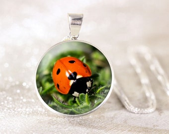 Sterling Silver Ladybug Necklace - Red Ladybird Jewelry, Sterling Silver Nature Jewelry, Genuine Silver Garden Necklace, Ladybug Jewelry
