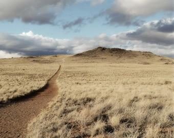 Desert Southwest Photography Print 11x14 Fine Art New Mexico Volcano Field Trail Summer Landscape Photography Print.