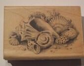 Wood Mounted Rubber Stamp -  Sea Shells - Inkadinkado